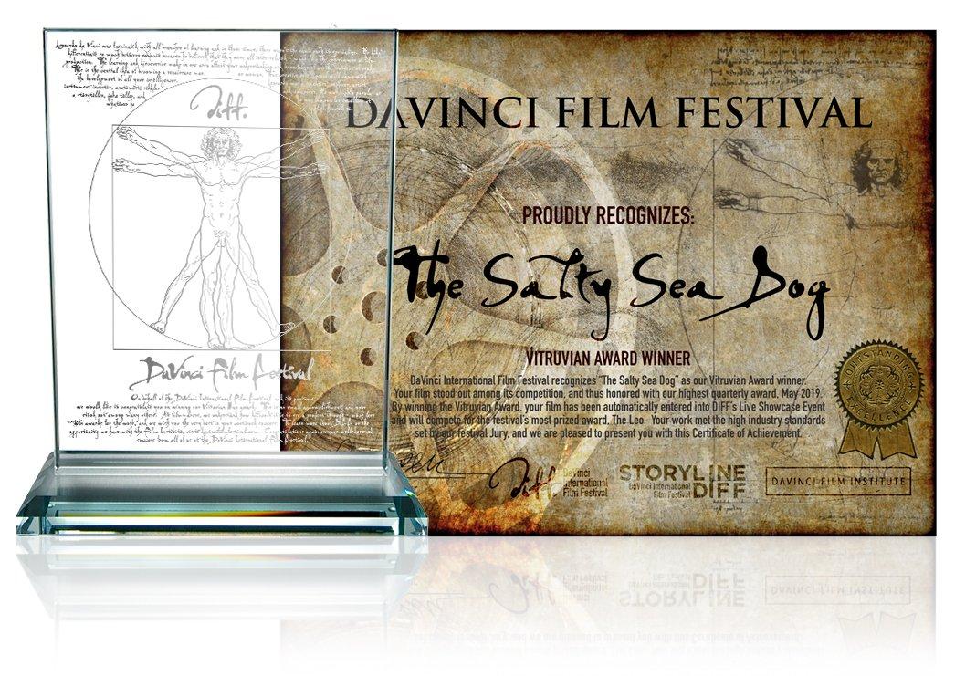 salty TOP 3 Testimonials festival testimonials